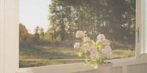 Kukkia ikkunalaudalla